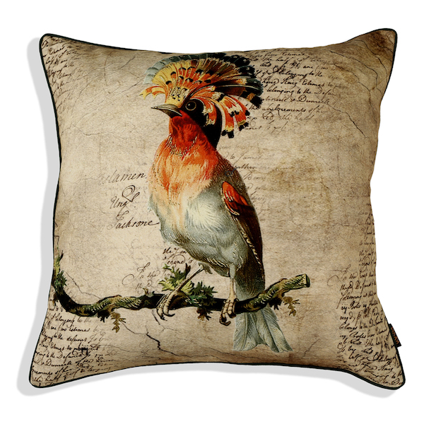 Bird Pride Cushion